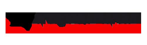 logo-netronic